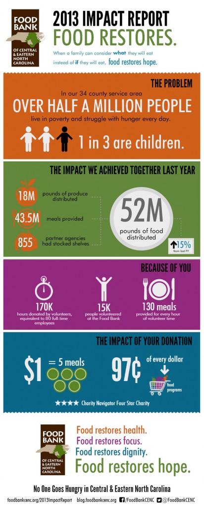 2013 Impact Report Infographic