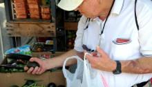 Photo of a senior at a food pantry