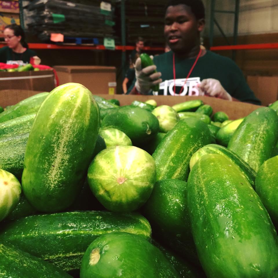 Photo of fresh cucumbers